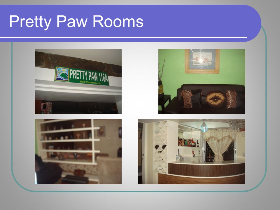 Pretty Paw Rooms