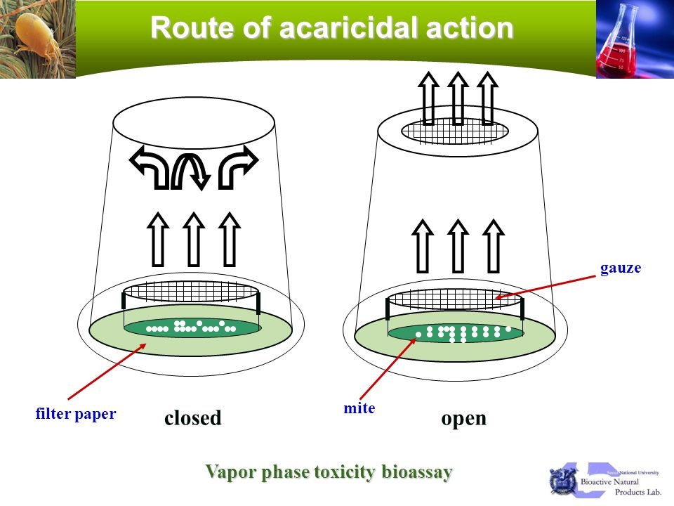 closedopen gauze mite filter paper Route of acaricidal action Vapor phase toxicity bioassay