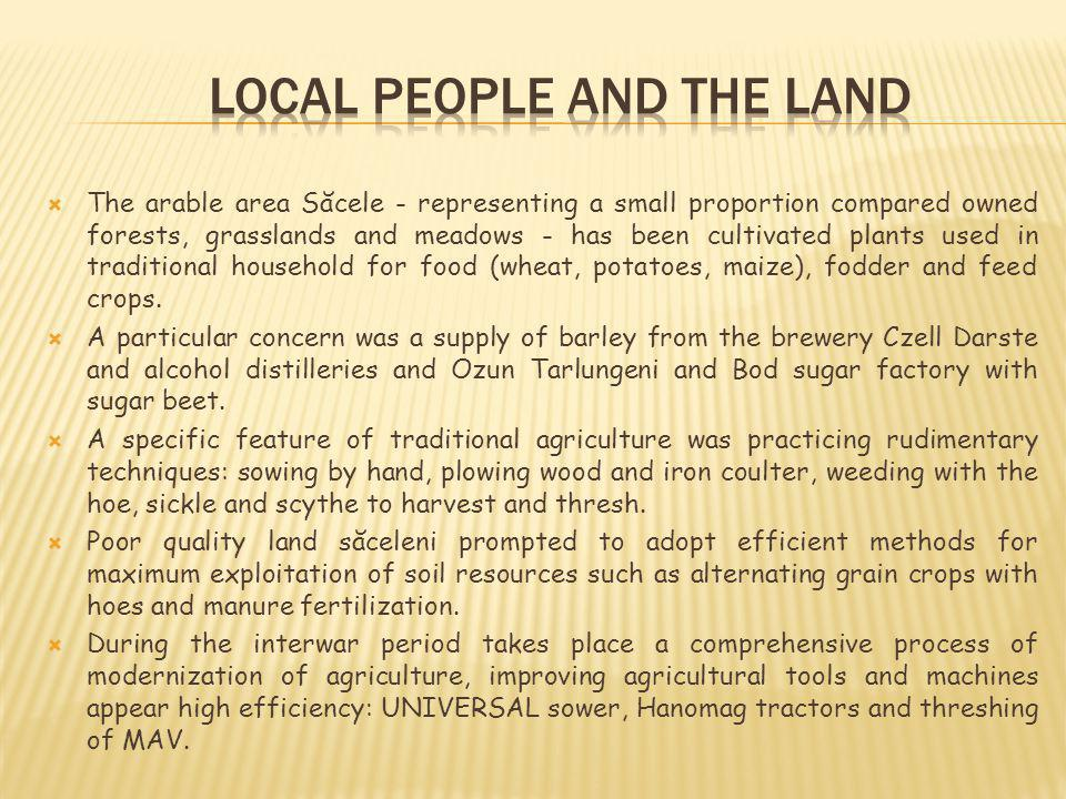 The arable area Săcele - representing a small proportion compared owned forests, grasslands and meadows - has been cultivated plants used in traditional household for food (wheat, potatoes, maize), fodder and feed crops.