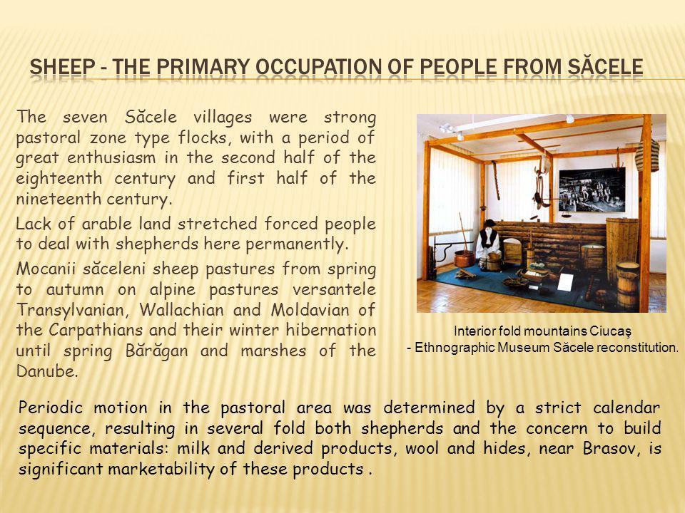 The seven Săcele villages were strong pastoral zone type flocks, with a period of great enthusiasm in the second half of the eighteenth century and first half of the nineteenth century.