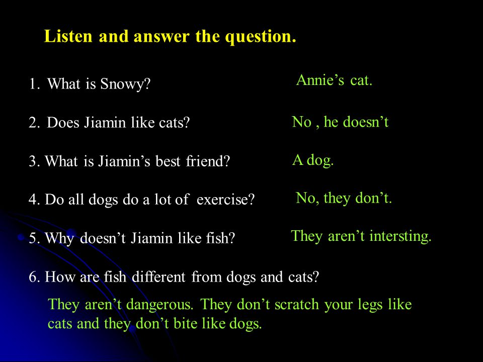 Listen and answer the question.1.What is Snowy. 2.Does Jiamin like cats.