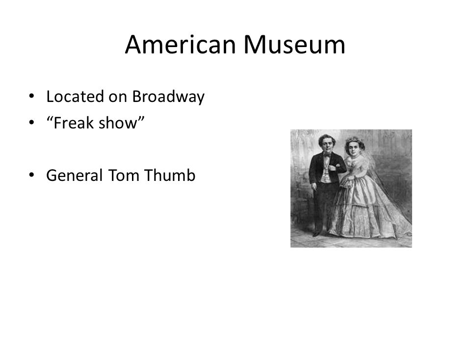 American Museum Located on Broadway Freak show General Tom Thumb