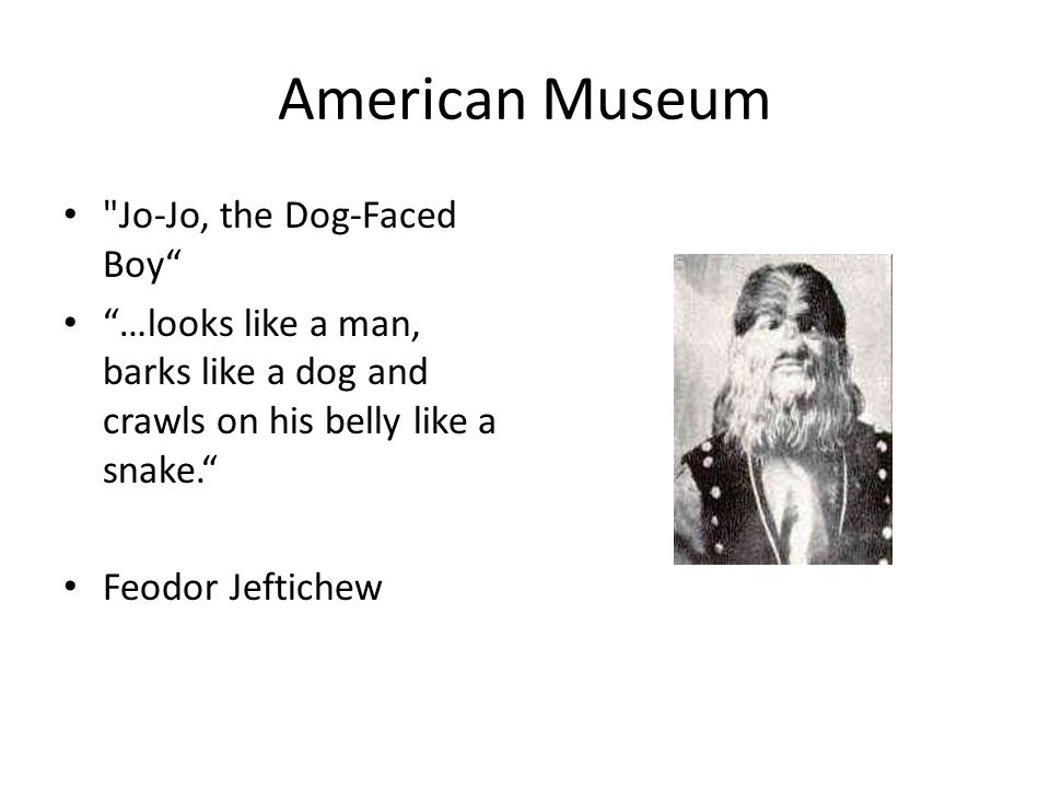American Museum Jo-Jo, the Dog-Faced Boy …looks like a man, barks like a dog and crawls on his belly like a snake.