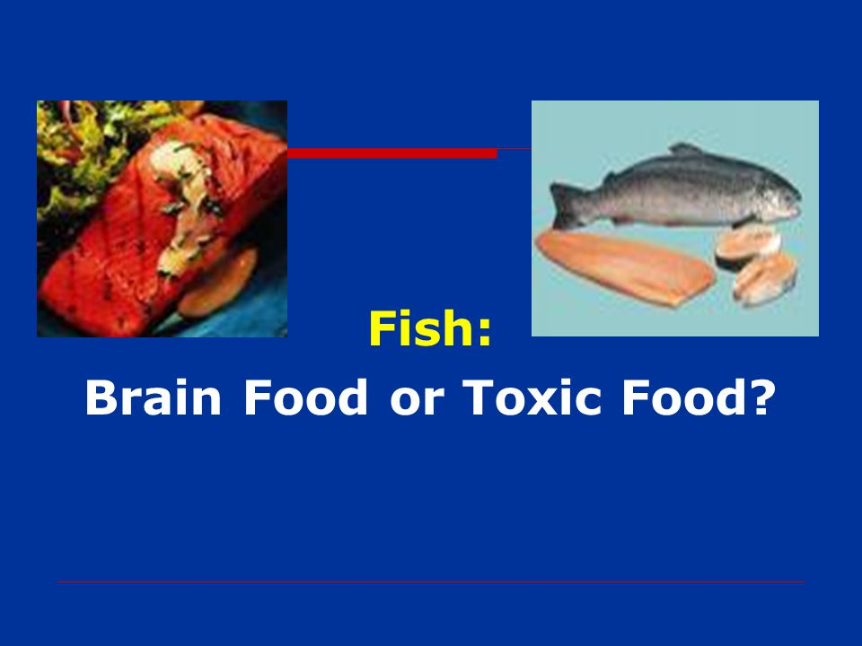 Fish: Brain Food or Toxic Food