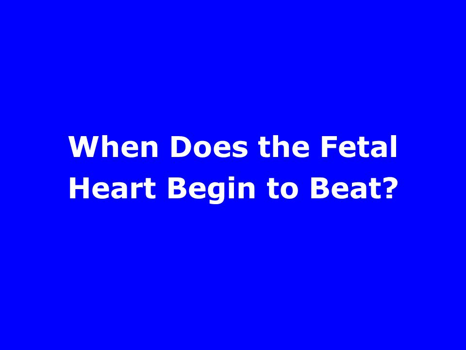 When Does the Fetal Heart Begin to Beat