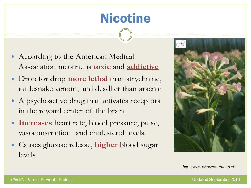 Nicotine According to the American Medical Association nicotine is toxic and addictive Drop for drop more lethal than strychnine, rattlesnake venom, a