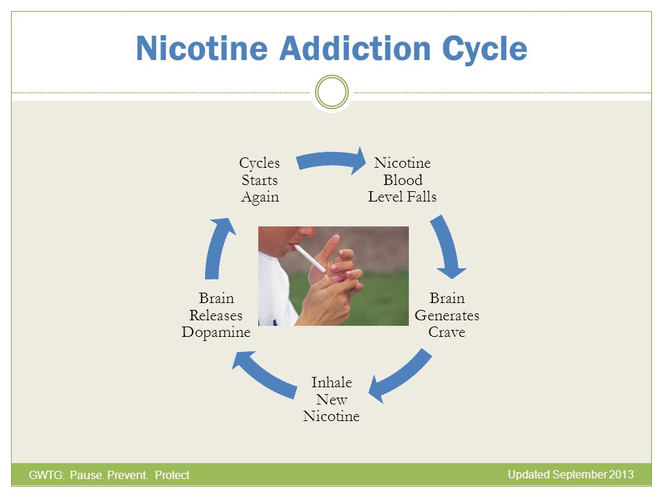 Nicotine Blood Level Falls Brain Generates Crave Inhale New Nicotine Brain Releases Dopamine Cycles Starts Again Nicotine Addiction Cycle GWTG: Pause.