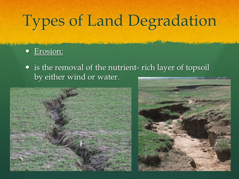 Types of Land Degradation Continued Wind Erosion: Wind Erosion: Wind Erosion can de determined as when the wind wears away at the earths surface.