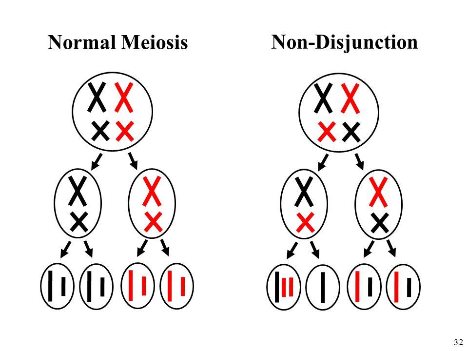 32 Non-Disjunction Normal Meiosis