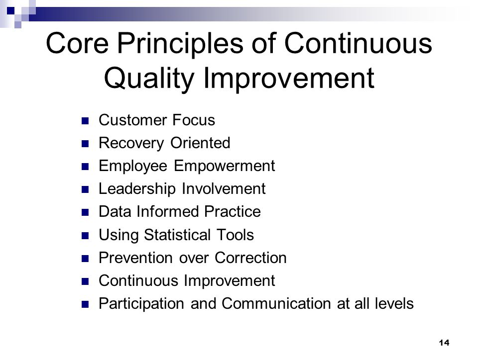 14 Core Principles of Continuous Quality Improvement Customer Focus Recovery Oriented Employee Empowerment Leadership Involvement Data Informed Practi