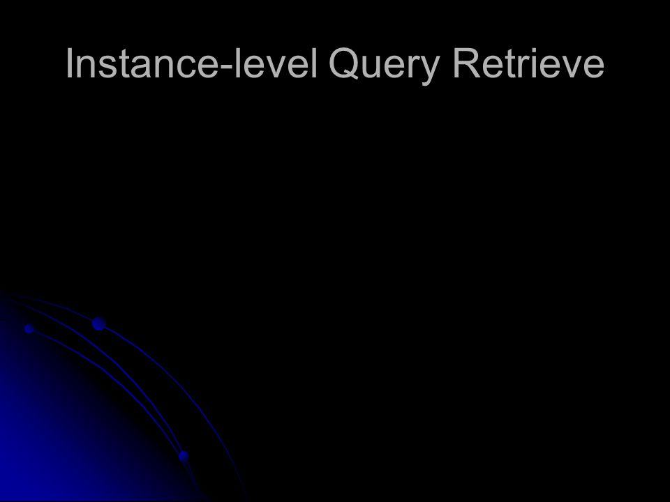 Instance-level Query Retrieve