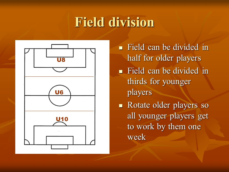 Field division Field can be divided in half for older players Field can be divided in half for older players Field can be divided in thirds for younge