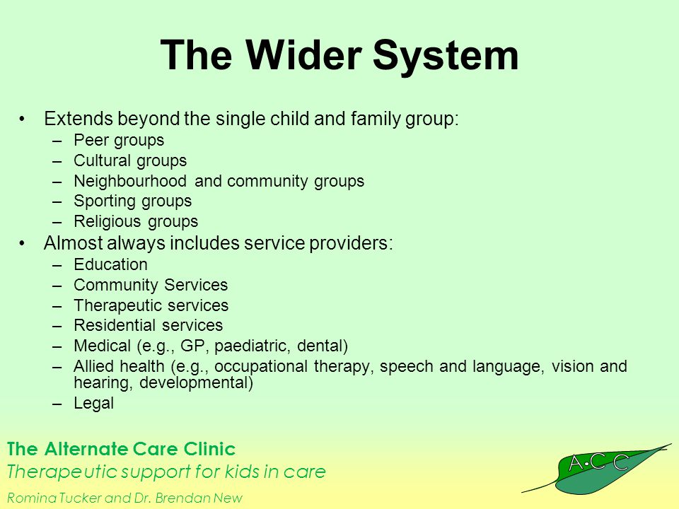 The Alternate Care Clinic Therapeutic support for kids in care Romina Tucker and Dr. Brendan New The Wider System Extends beyond the single child and