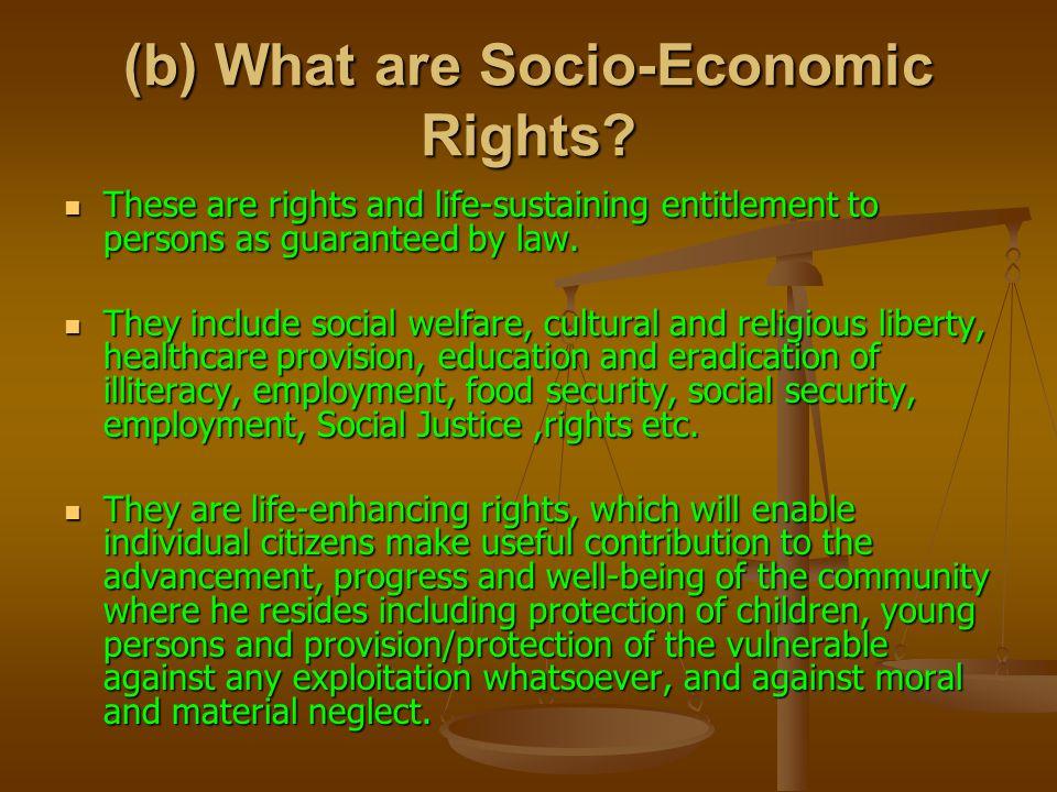 (b) What are Socio-Economic Rights.
