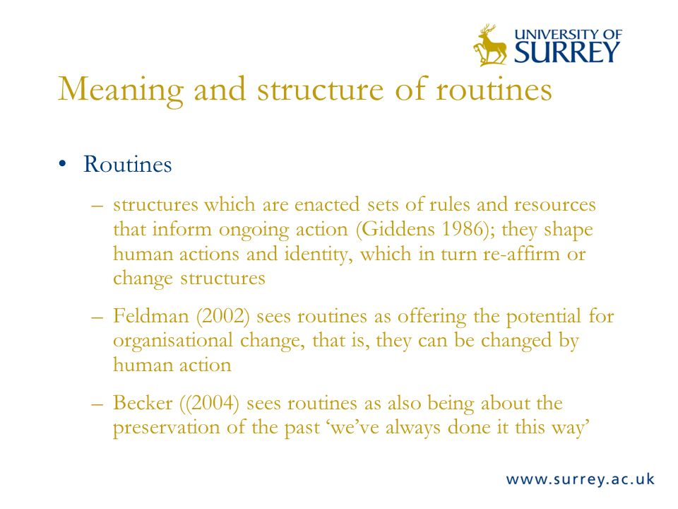 Meaning and structure of routines Routines –structures which are enacted sets of rules and resources that inform ongoing action (Giddens 1986); they shape human actions and identity, which in turn re-affirm or change structures –Feldman (2002) sees routines as offering the potential for organisational change, that is, they can be changed by human action –Becker ((2004) sees routines as also being about the preservation of the past weve always done it this way