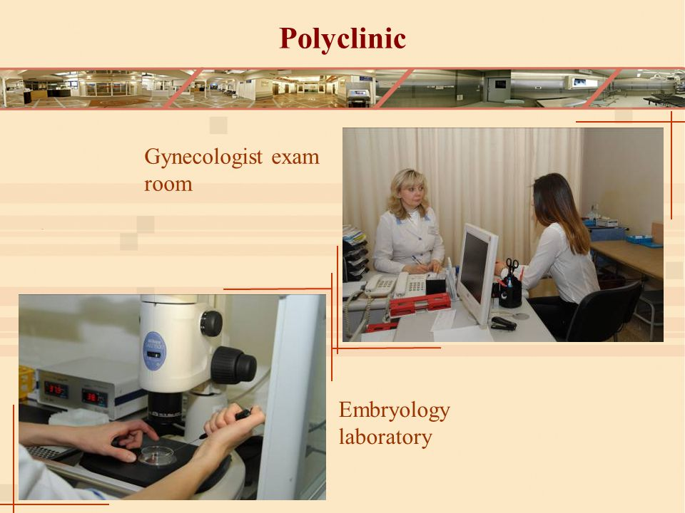 Polyclinic Gynecologist exam room Embryology laboratory