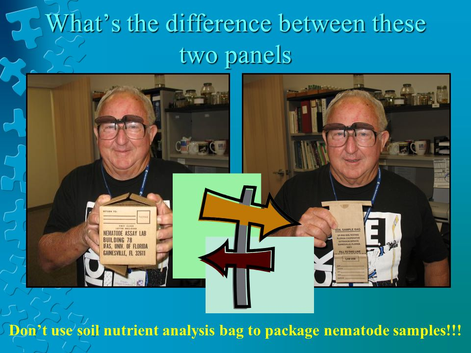 Dont use soil nutrient analysis bag to package nematode samples!!.