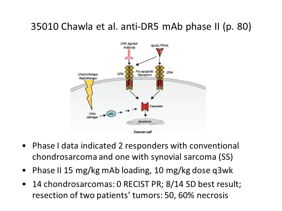 35010 Chawla et al. anti-DR5 mAb phase II (p.