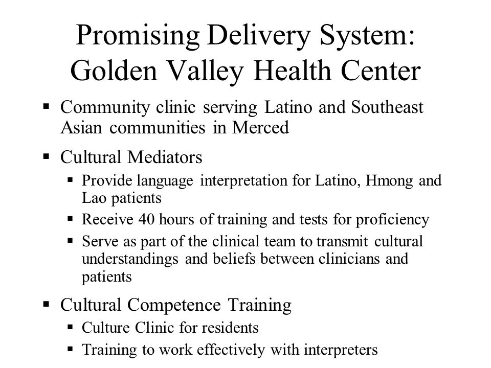 Promising Delivery System: Asian Pacific Health Care Venture Source: A Functional Manual for Providing Linguistically Competent Health Care Services a