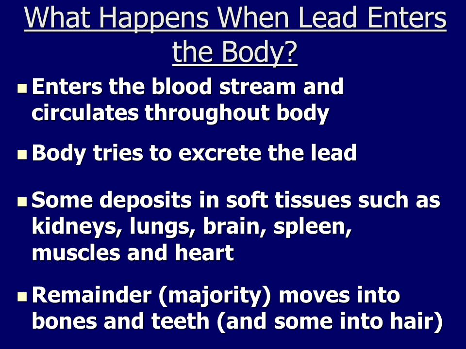 What Happens When Lead Enters the Body.