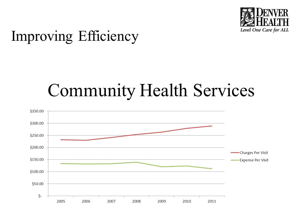 Community Health Services Improving Efficiency
