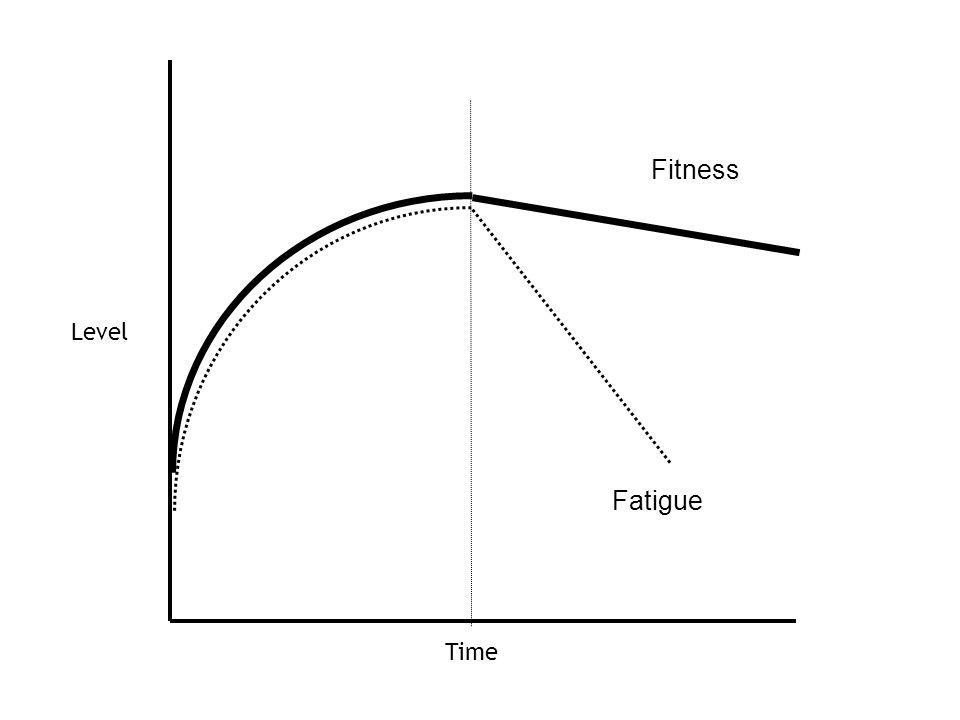 Time Level Fitness Fatigue