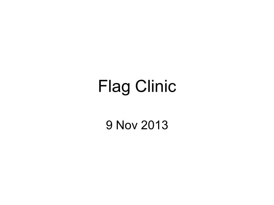 Flag Clinic 9 Nov 2013
