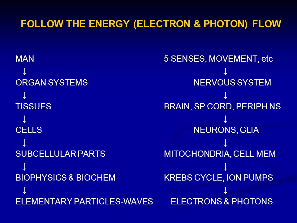FOLLOW THE ENERGY (ELECTRON & PHOTON) FLOW MAN5 SENSES, MOVEMENT, etc ORGAN SYSTEMSNERVOUS SYSTEM TISSUESBRAIN, SP CORD, PERIPH NS CELLSNEURONS, GLIA