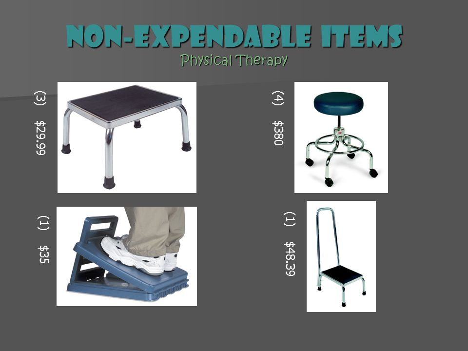 Non-expendable Items Physical Therapy (4) $380 (1) $35 (3) $29.99 (1) $48.39