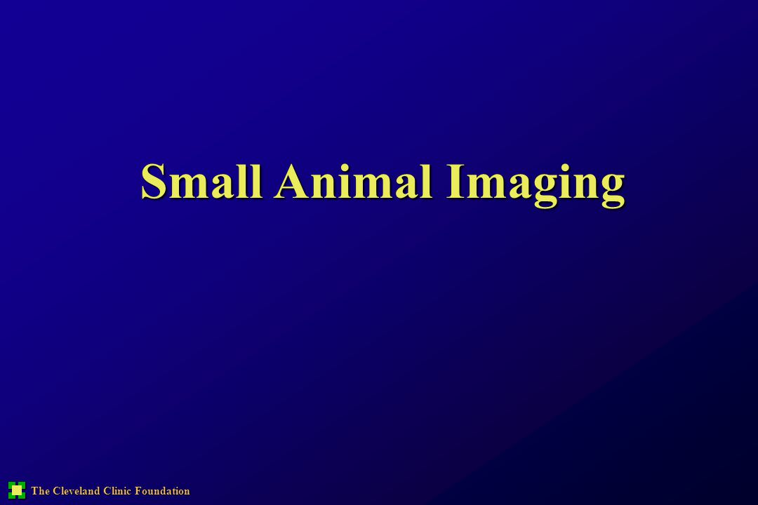The Cleveland Clinic Foundation Small Animal Imaging