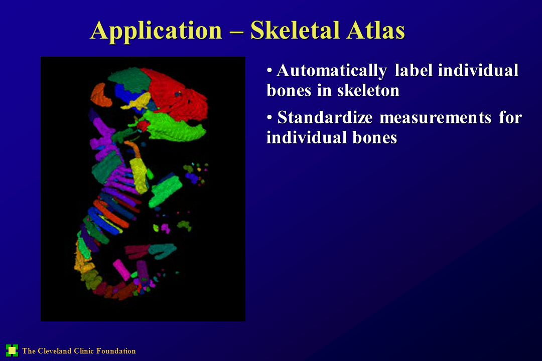 The Cleveland Clinic Foundation Application – Skeletal Atlas Automatically label individual bones in skeleton Automatically label individual bones in