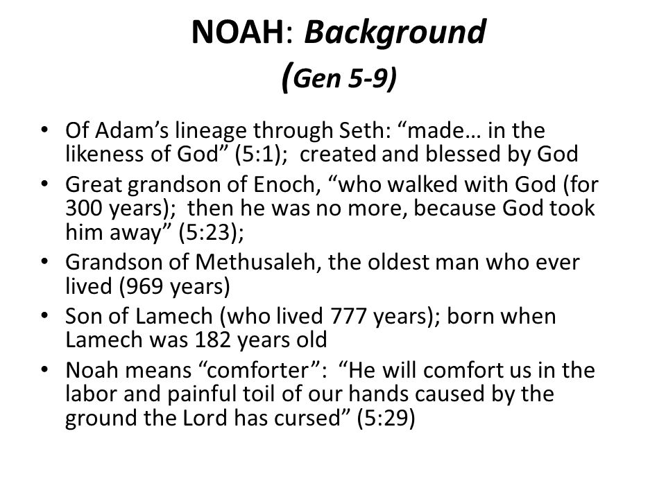 NOAH: Background ( Gen 5-9) Of Adams lineage through Seth: made… in the likeness of God (5:1); created and blessed by God Great grandson of Enoch, who walked with God (for 300 years); then he was no more, because God took him away (5:23); Grandson of Methusaleh, the oldest man who ever lived (969 years) Son of Lamech (who lived 777 years); born when Lamech was 182 years old Noah means comforter: He will comfort us in the labor and painful toil of our hands caused by the ground the Lord has cursed (5:29)