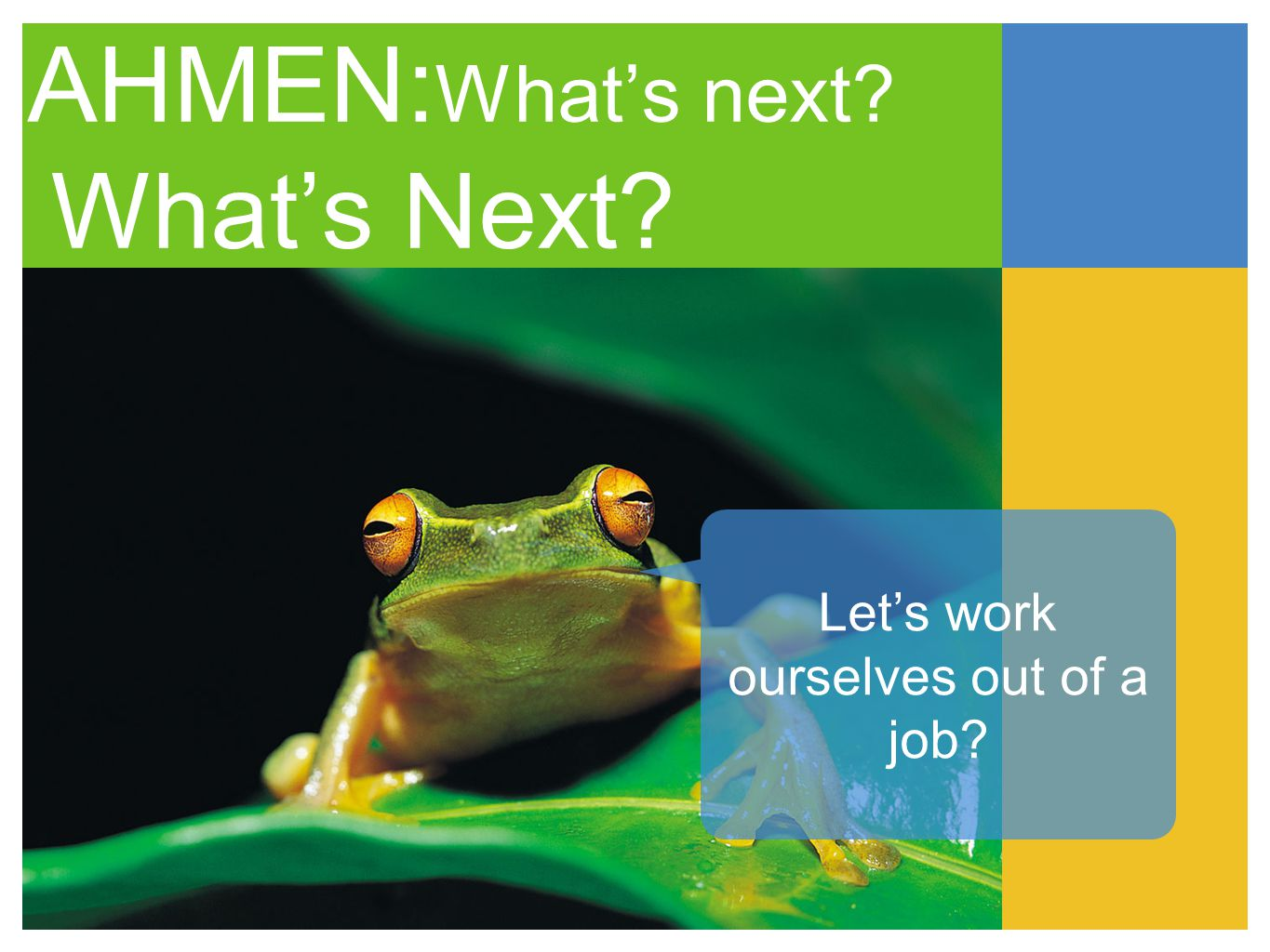 AHMEN: Whats next? Whats Next? Lets work ourselves out of a job?