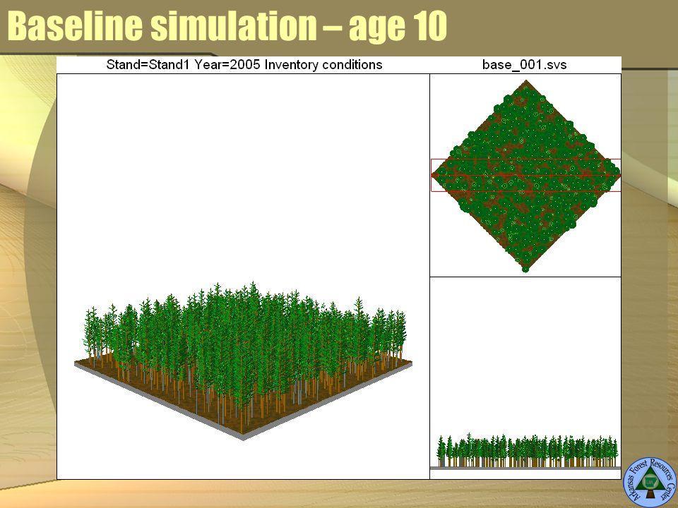 Baseline simulation – age 10