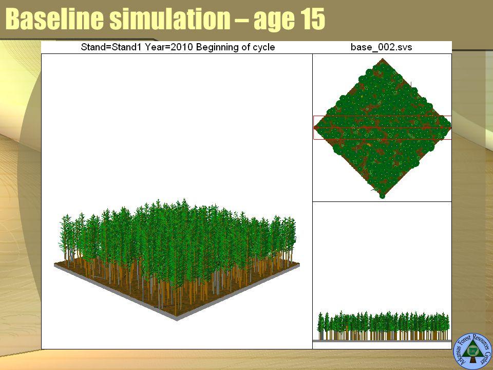 Baseline simulation – age 15