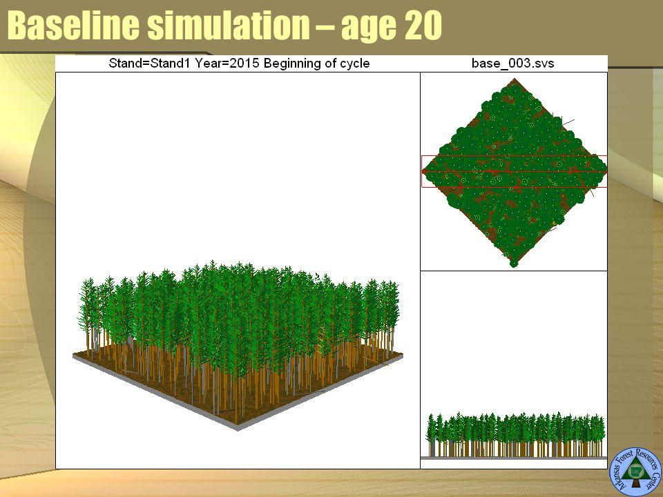 Baseline simulation – age 20