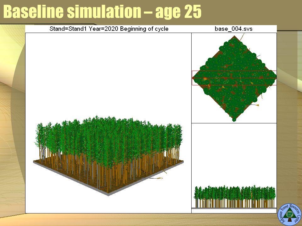 Baseline simulation – age 25