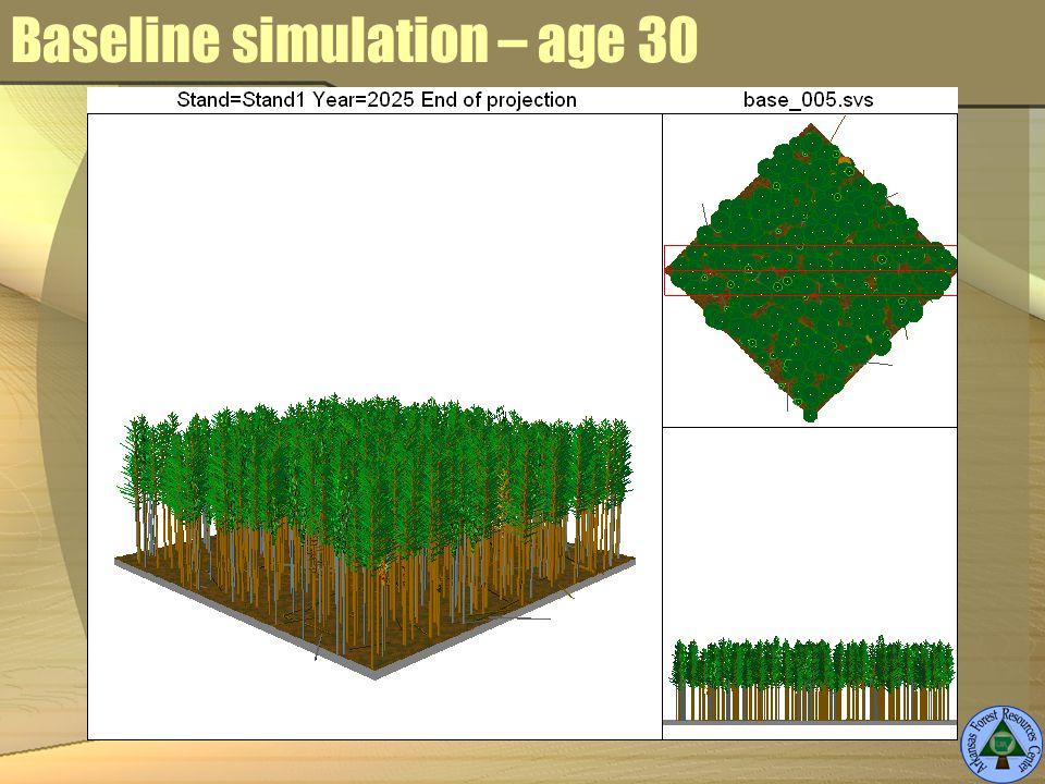 Baseline simulation – age 30