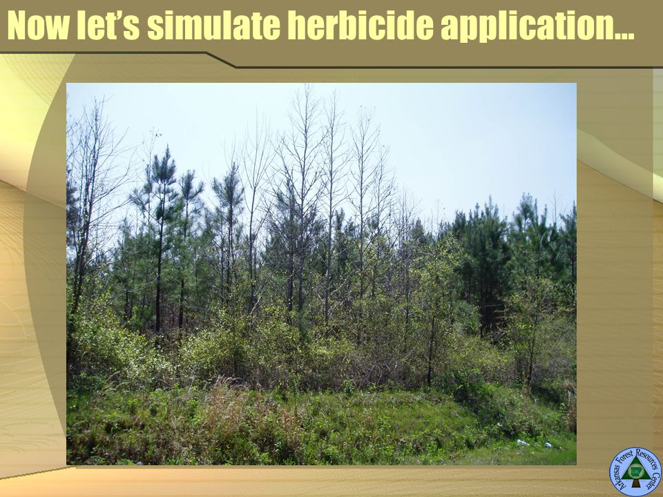 Now lets simulate herbicide application…