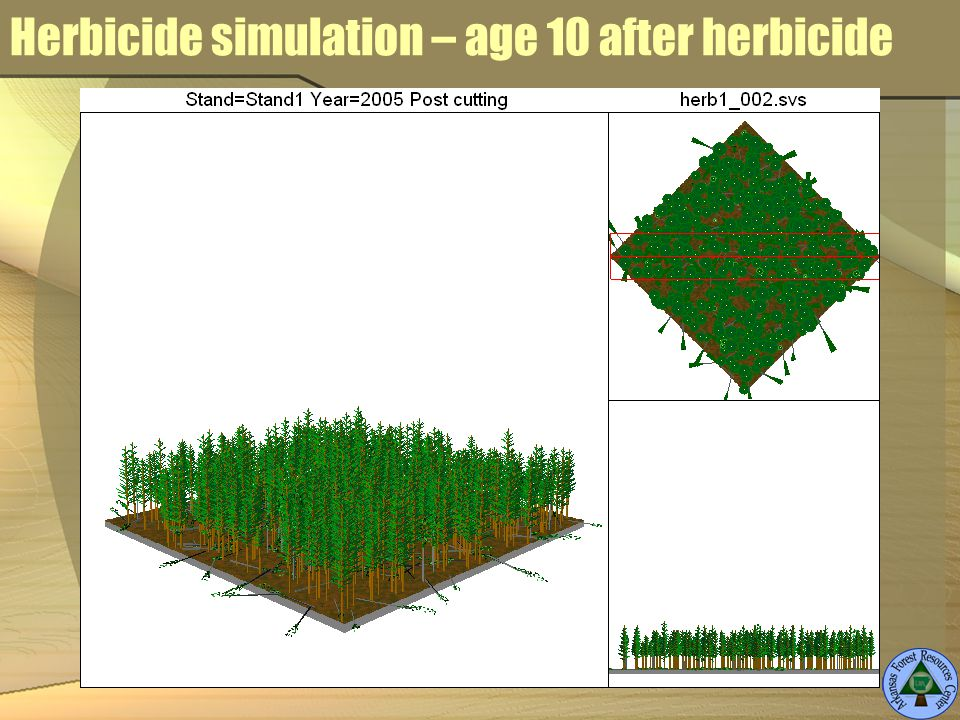 Herbicide simulation – age 10 after herbicide