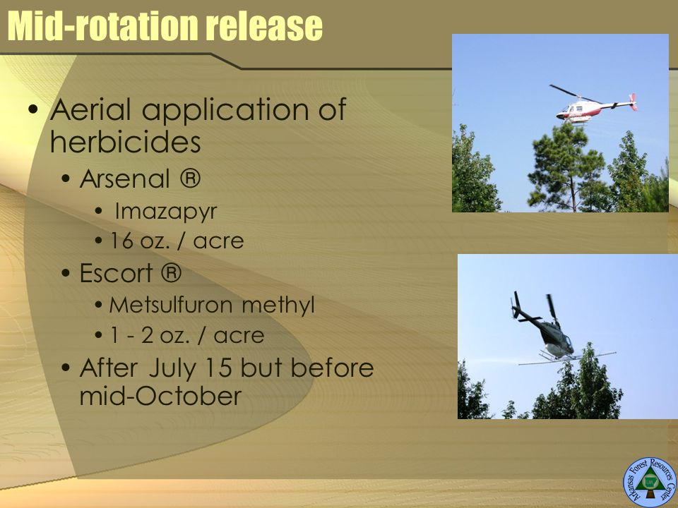 Mid-rotation release Aerial application of herbicides Arsenal ® Imazapyr 16 oz.