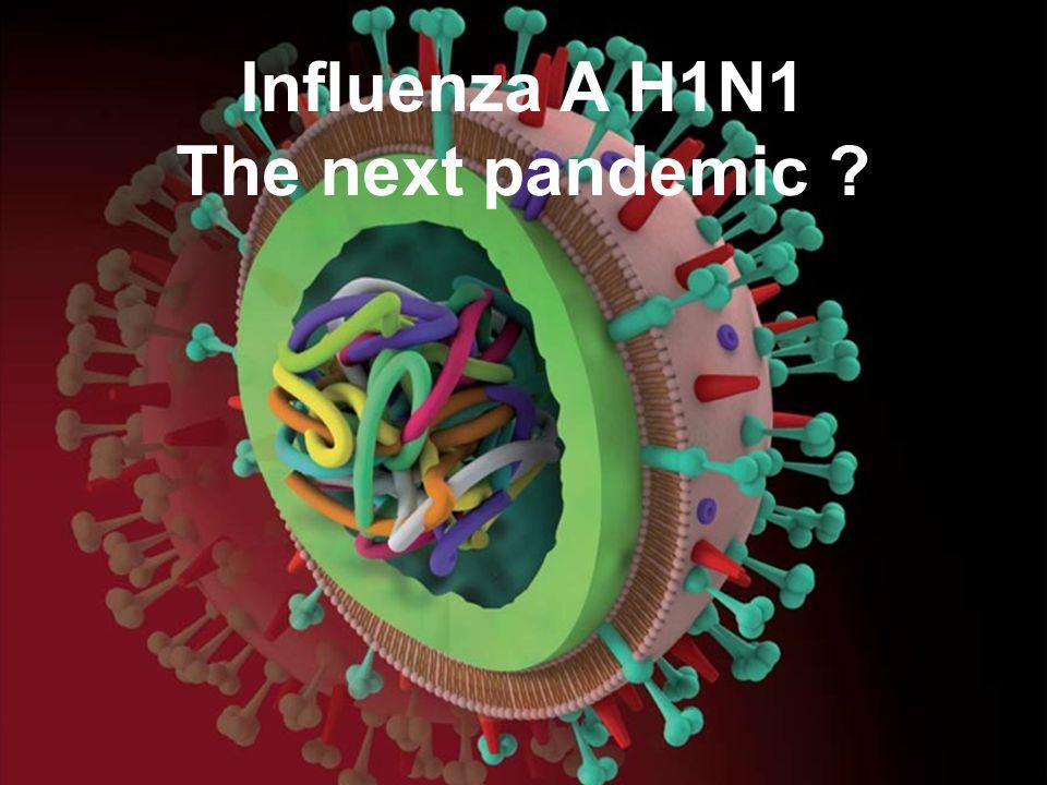 Influenza A H1N1 The next pandemic ?