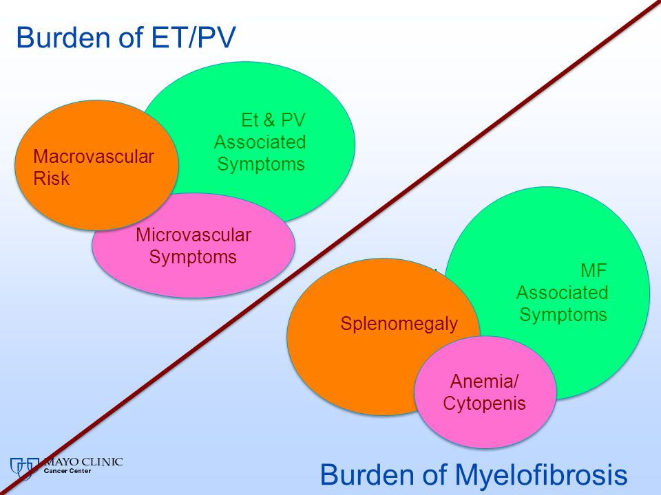 Burden of ET/PV Microvascular Symptoms Microvascular Symptoms Macrovascular Risk MPN Associate d Symptom s Burden of Myelofibrosis Anemia/ Cytopenis A