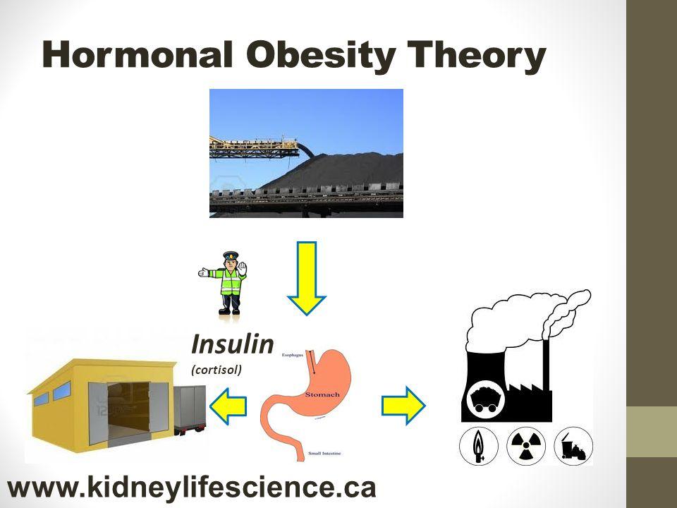 Hormonal Obesity Theory Insulin (cortisol) www.kidneylifescience.ca