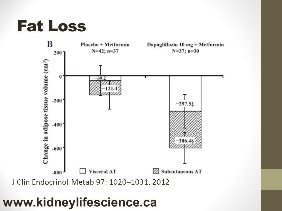J Clin Endocrinol Metab 97: 1020–1031, 2012 Fat Loss www.kidneylifescience.ca