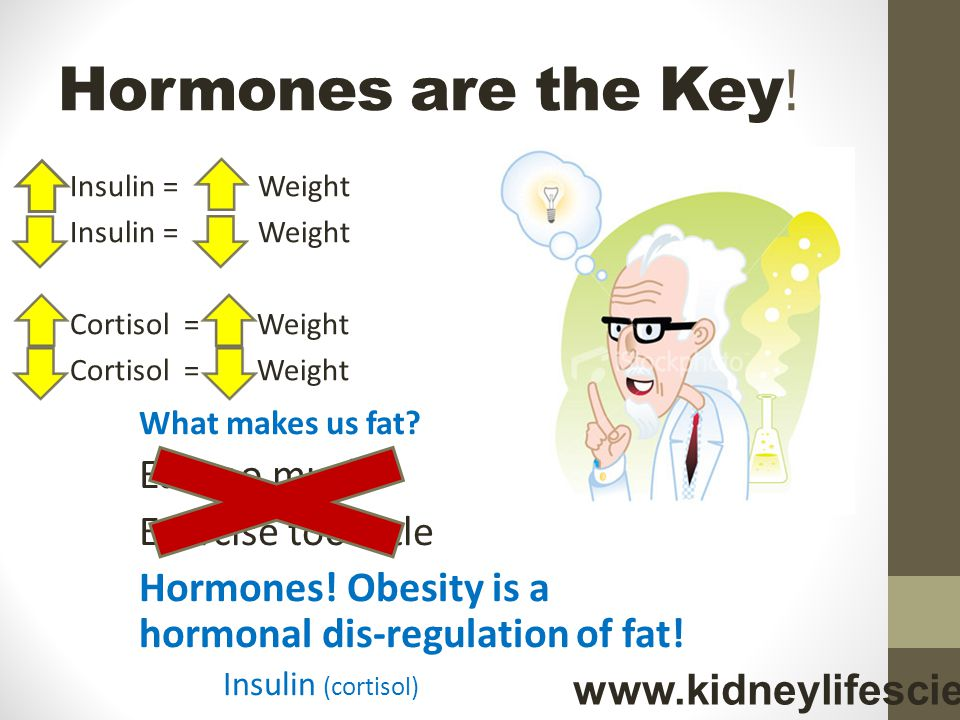 Hormones are the Key .Insulin = Weight Cortisol = Weight What makes us fat.