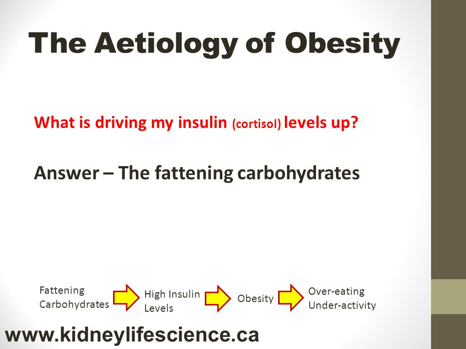 The Aetiology of Obesity What is driving my insulin (cortisol) levels up? Answer – The fattening carbohydrates Fattening Carbohydrates High Insulin Le