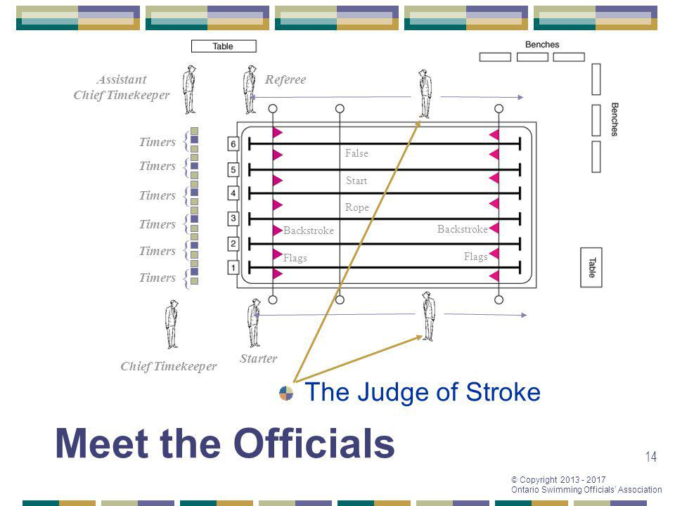 © Copyright 2013 - 2017 Ontario Swimming Officials Association 14 Referee Starter Chief Timekeeper Assistant Chief Timekeeper { { { { { { Timers False Start Rope Backstroke Flags Backstroke Flags The Judge of Stroke Meet the Officials
