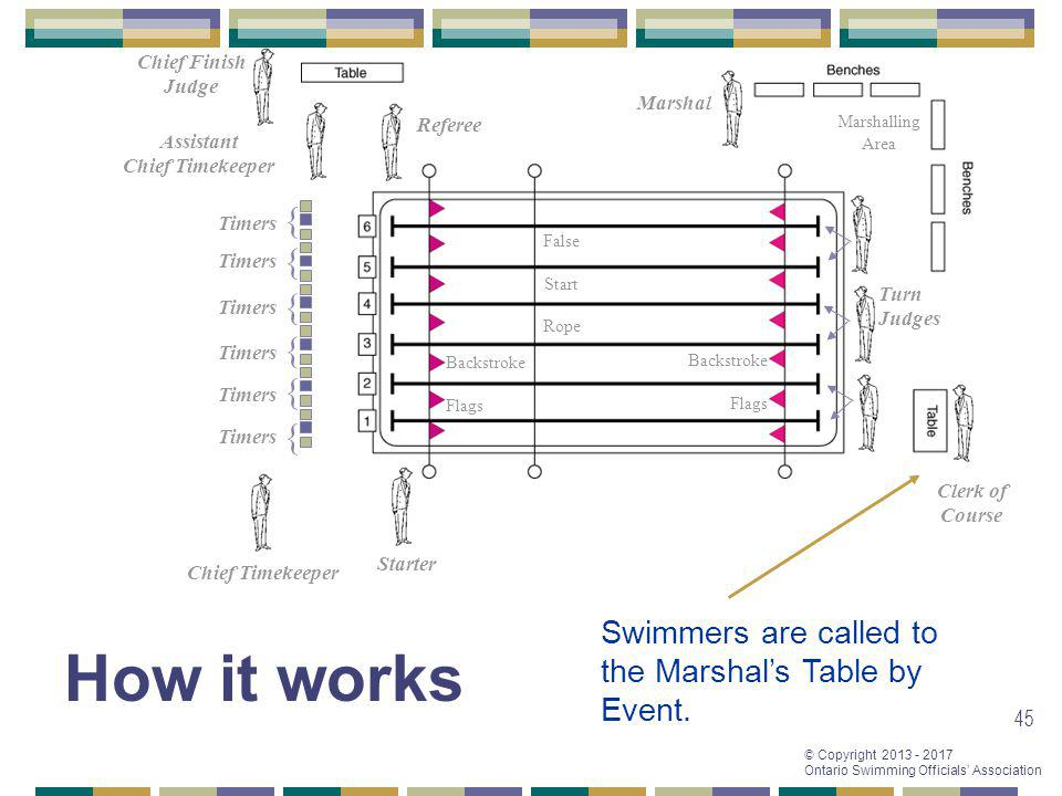 © Copyright 2013 - 2017 Ontario Swimming Officials Association 45 How it works Referee Starter Chief Timekeeper Assistant Chief Timekeeper { { { { { {