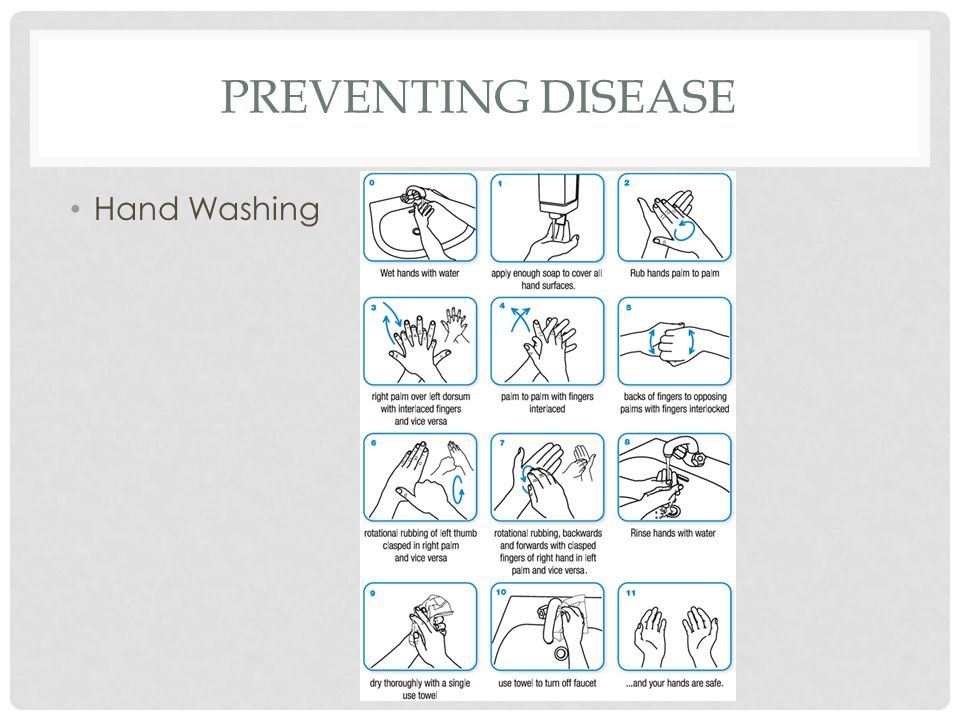 PREVENTING DISEASE Hand Washing
